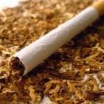 Возможность появления контрабандных сигарет в Казахстане