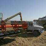 Украина должна отказаться от создания Причерноморского зернового пула