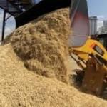 МСХ Казахстана желает ввести систему электронного госреестра зерновых расписок