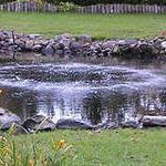 В СКО проводится аэрация водоемов