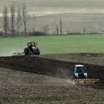 Шестьсот земельных участков в Республике Казахстан возвращено в госсобственность