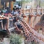 Достопримечательности РК: цирк и зоопарк в Алматы