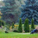 Ботанической сад в городе Бишкеке будет охранять государство